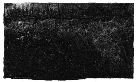 Dark glade-first impression. (Monoprint-© 2008 Michael Hill)