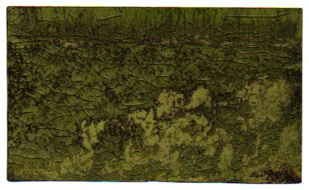 Dark glade-the etching plate following exposure to sunlight and wetbrush. (Design-© 2008 Michael Hill)
