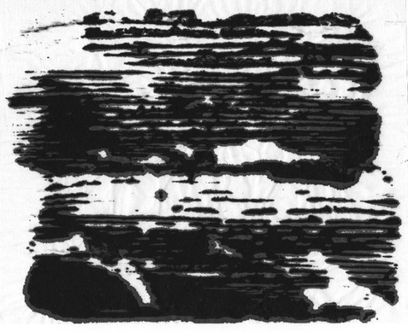 The inky black lake scene (Monoprint-© 2011 Michael Hill)
