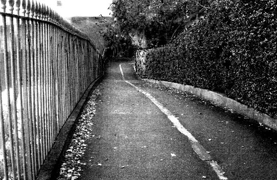 Down the garden path (Photo-© 2013 Michael Hill)
