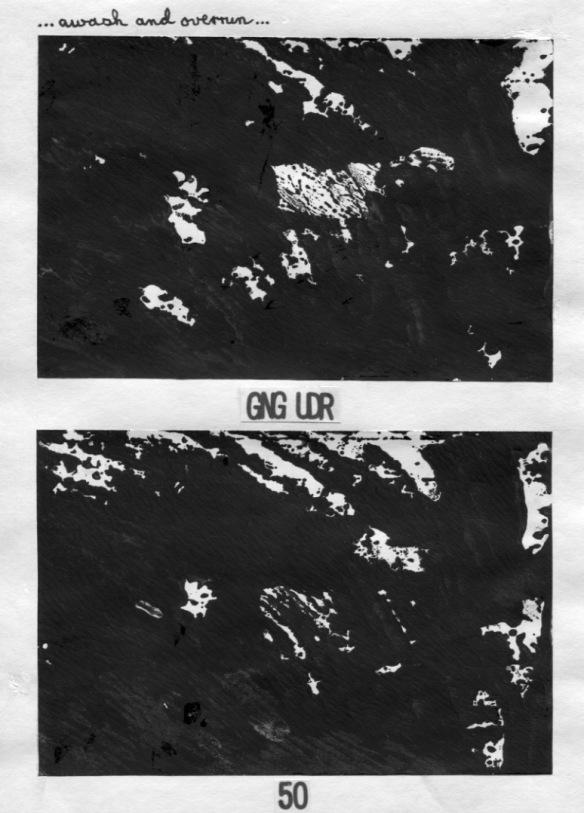 BPdigi-p50:96